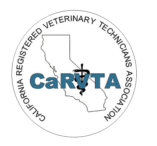 CaRVTA Logo Items